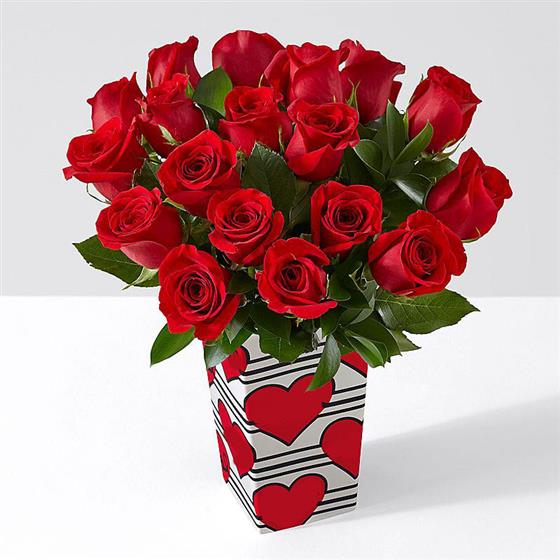 18 Large Red Roses